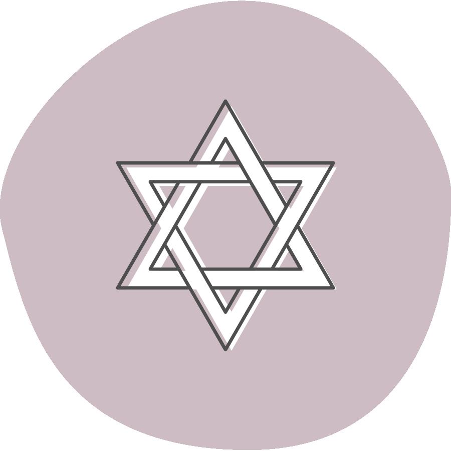 Jewish New Teacher Project